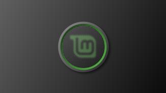 linux_mint_mesh
